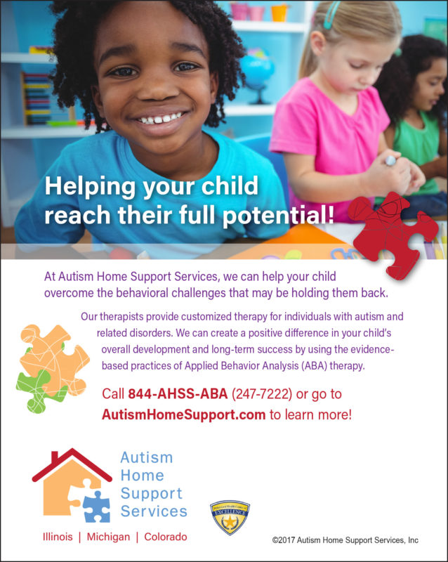 2017 Autism Home Support Services
