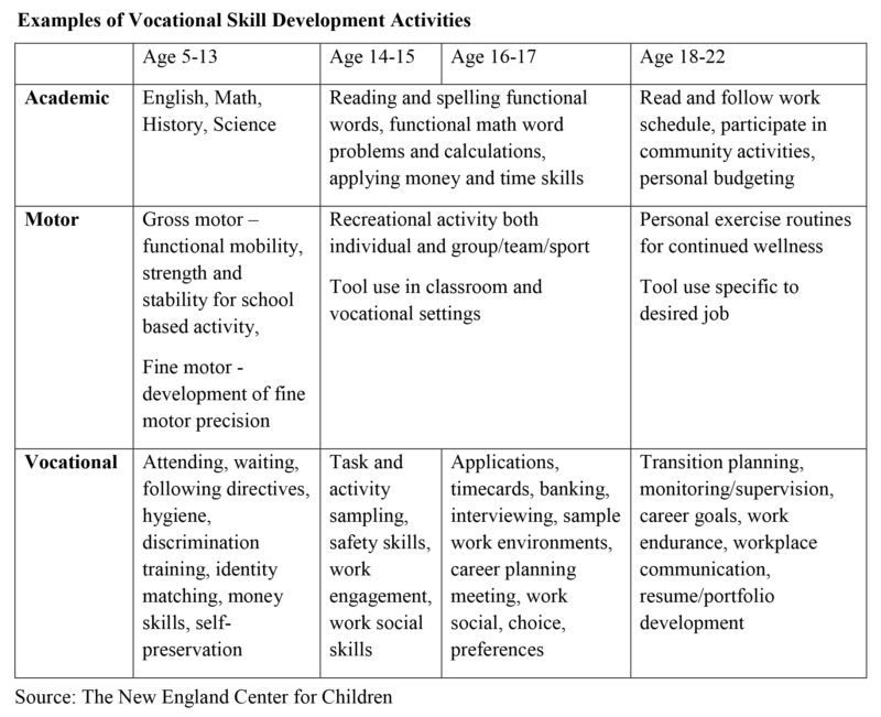 Examples of Vocational Skill Development Activities